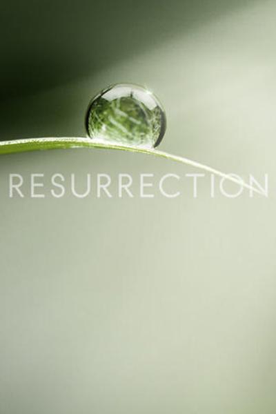 Resurrection ~ Staffel 2